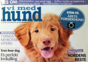 To artikler om  behandling av ryggsmerte og behandling av epilepsi med naturmedisin - publisert i Vi med Hund nr 2/2012